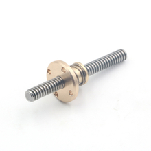 China Supplier Lead Screw with Anti-Backlash Brass Nut for Printing Machine